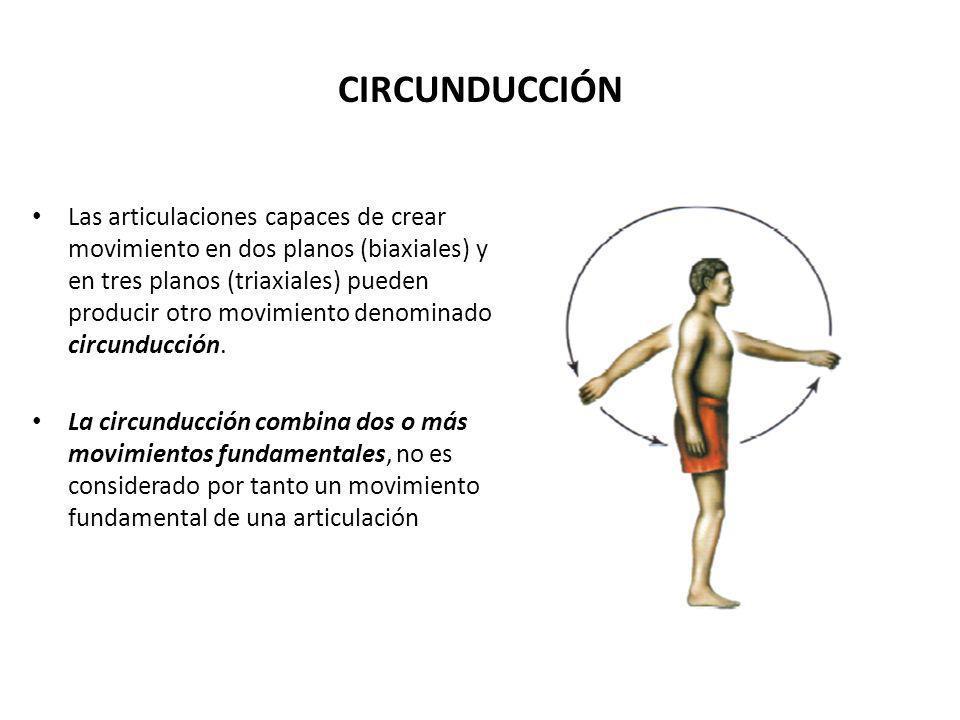 CIRCUNDUCCIÓN