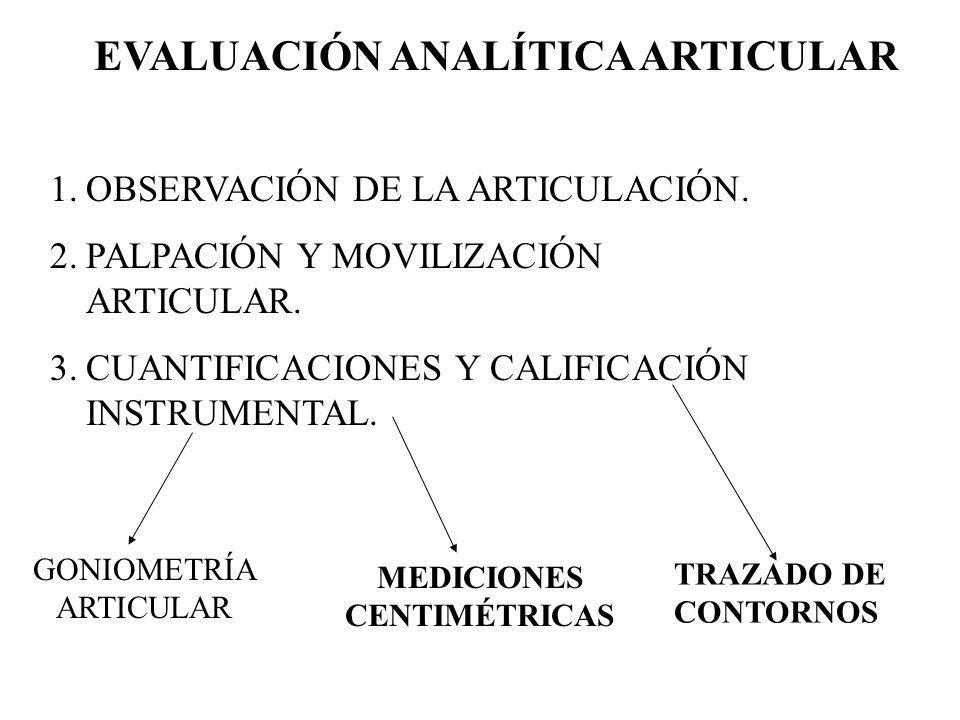 EVALUACIÓN ANALÍTICA ARTICULAR MEDICIONES CENTIMÉTRICAS