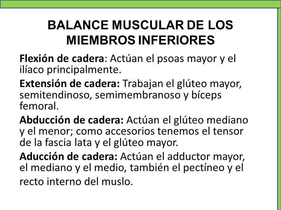 BALANCE MUSCULAR DE LOS MIEMBROS INFERIORES