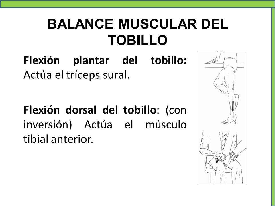 BALANCE MUSCULAR DEL TOBILLO