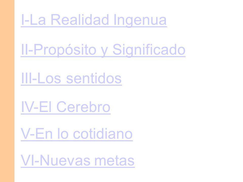 I-La Realidad Ingenua II-Propósito y Significado. III-Los sentidos. IV-El Cerebro. V-En lo cotidiano.