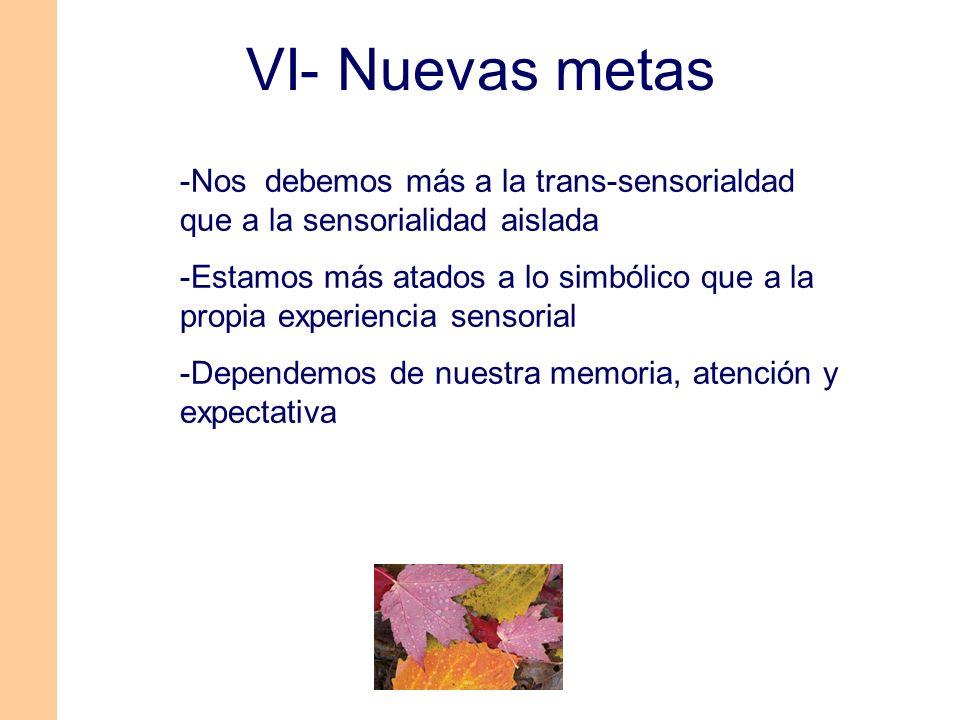 VI- Nuevas metas -Nos debemos más a la trans-sensorialdad que a la sensorialidad aislada.