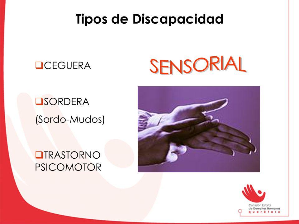 SENSORIAL Tipos de Discapacidad CEGUERA SORDERA (Sordo-Mudos)
