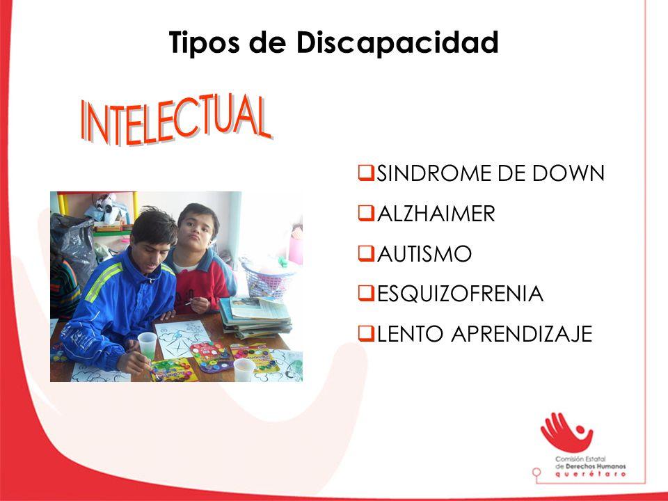INTELECTUAL Tipos de Discapacidad SINDROME DE DOWN ALZHAIMER AUTISMO