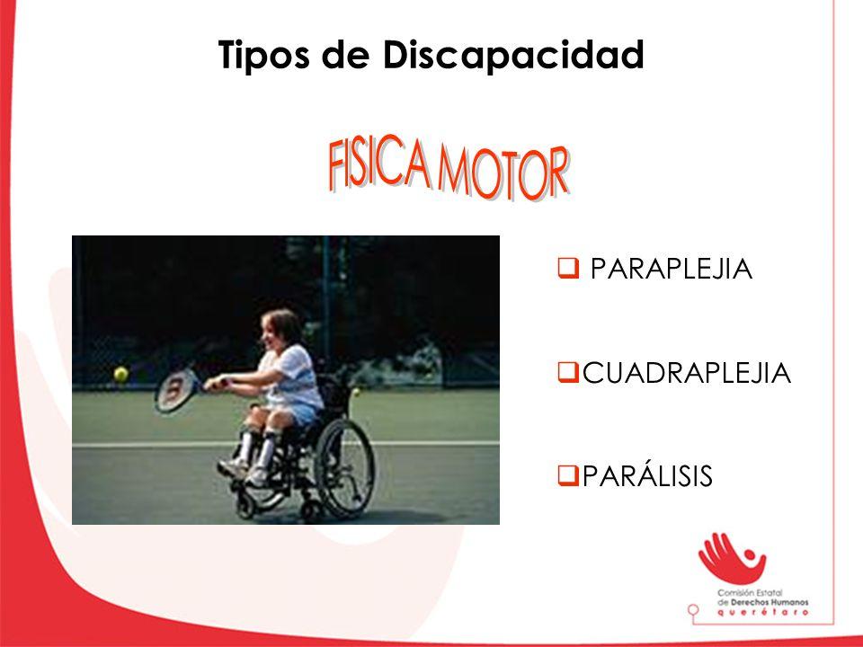 Tipos de Discapacidad FISICA MOTOR PARAPLEJIA CUADRAPLEJIA PARÁLISIS