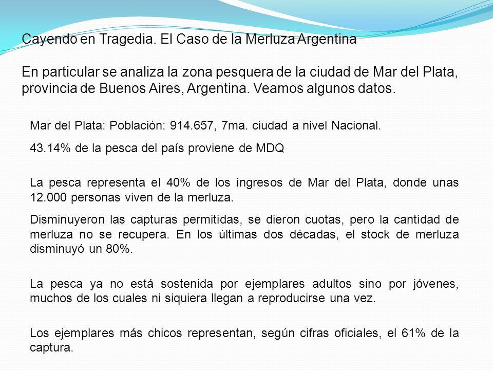 Cayendo en Tragedia. El Caso de la Merluza Argentina