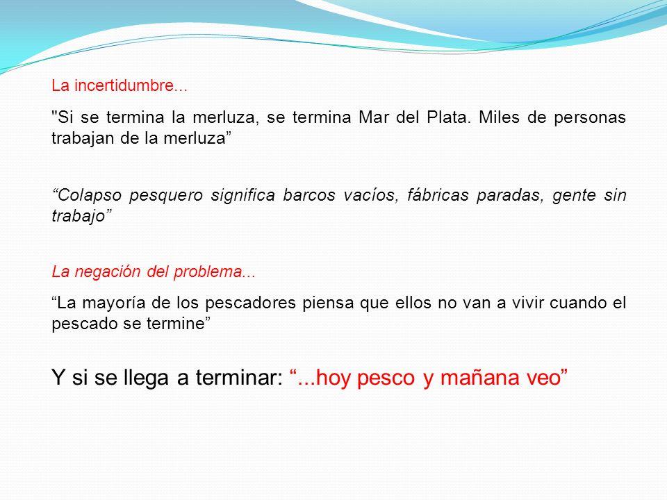 La incertidumbre... Si se termina la merluza, se termina Mar del Plata. Miles de personas trabajan de la merluza
