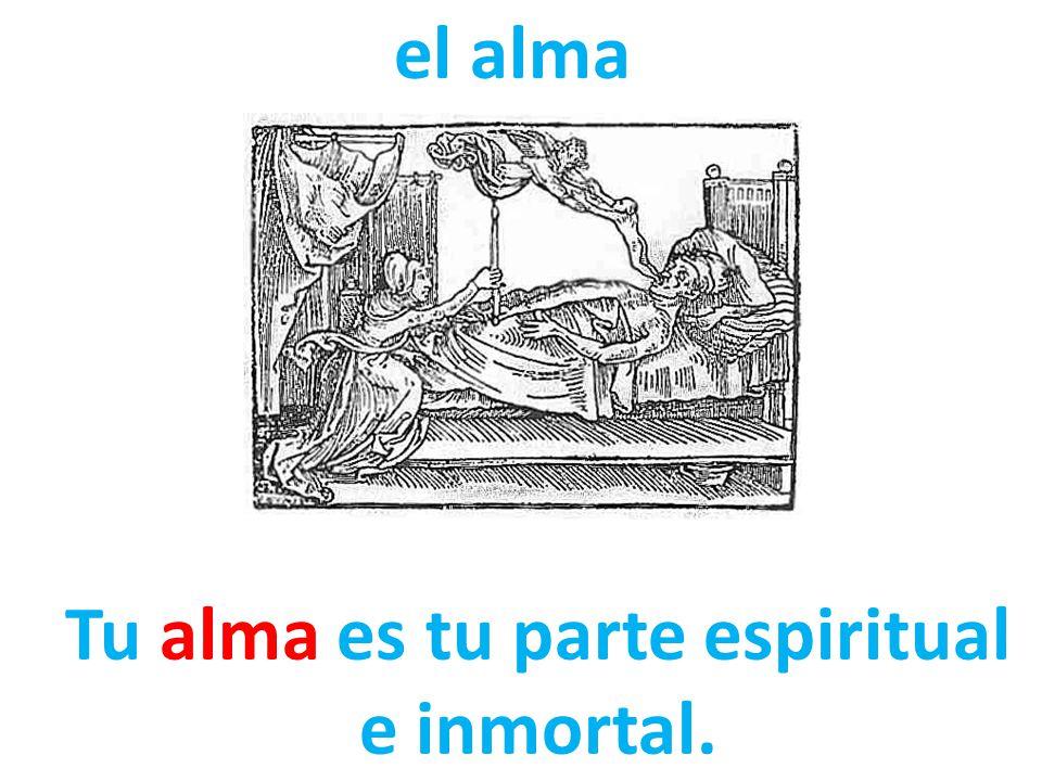 Tu alma es tu parte espiritual e inmortal.
