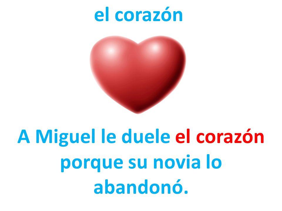 A Miguel le duele el corazón porque su novia lo abandonó.