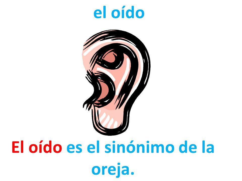 El oído es el sinónimo de la oreja.