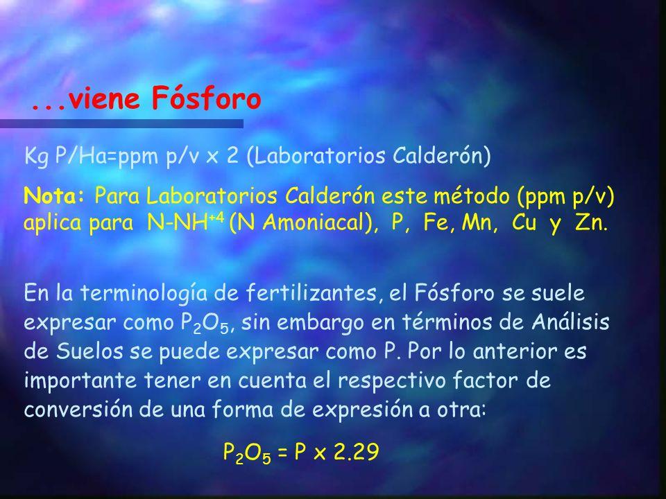 ...viene Fósforo Kg P/Ha=ppm p/v x 2 (Laboratorios Calderón)