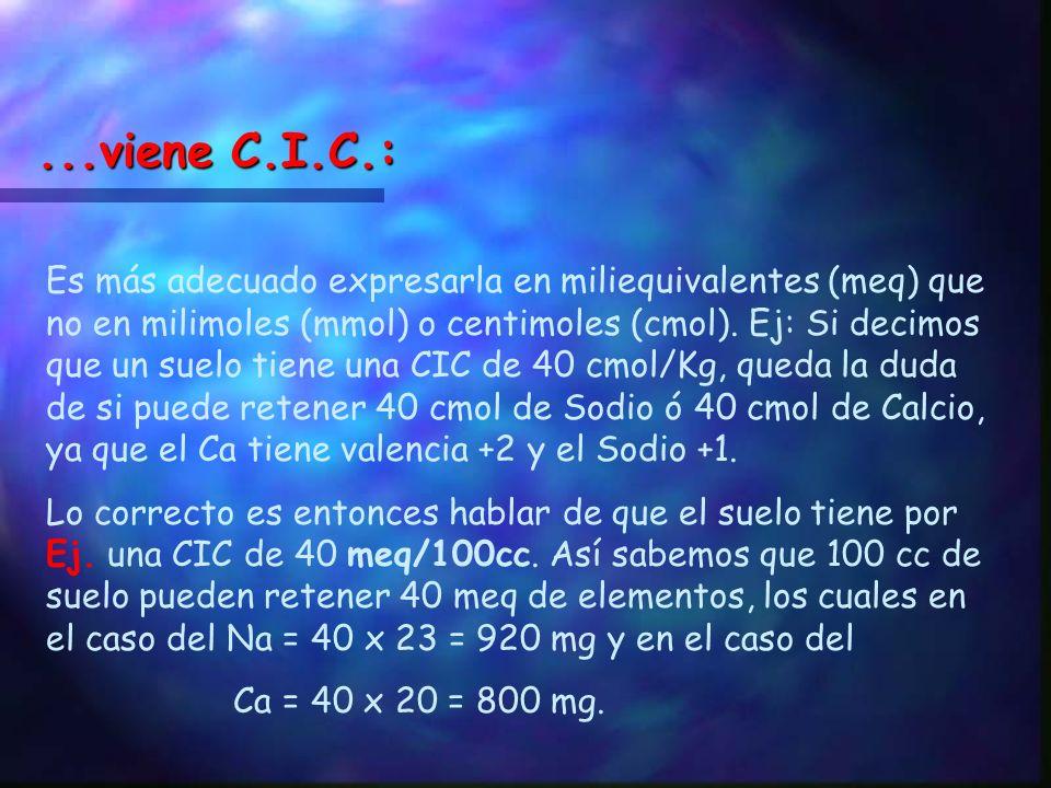 ...viene C.I.C.: