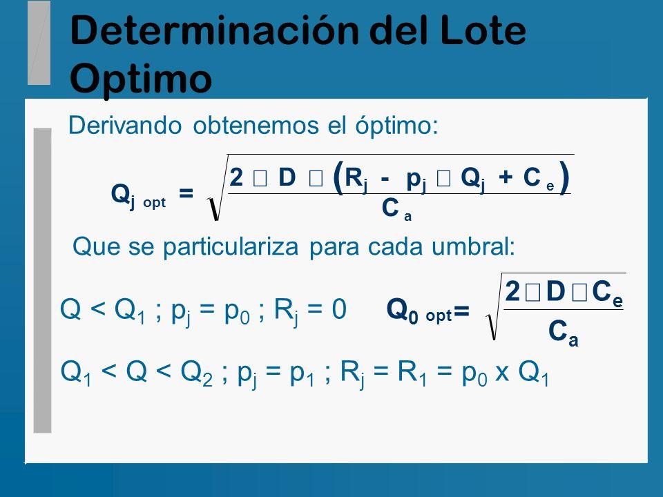 Determinación del Lote Optimo