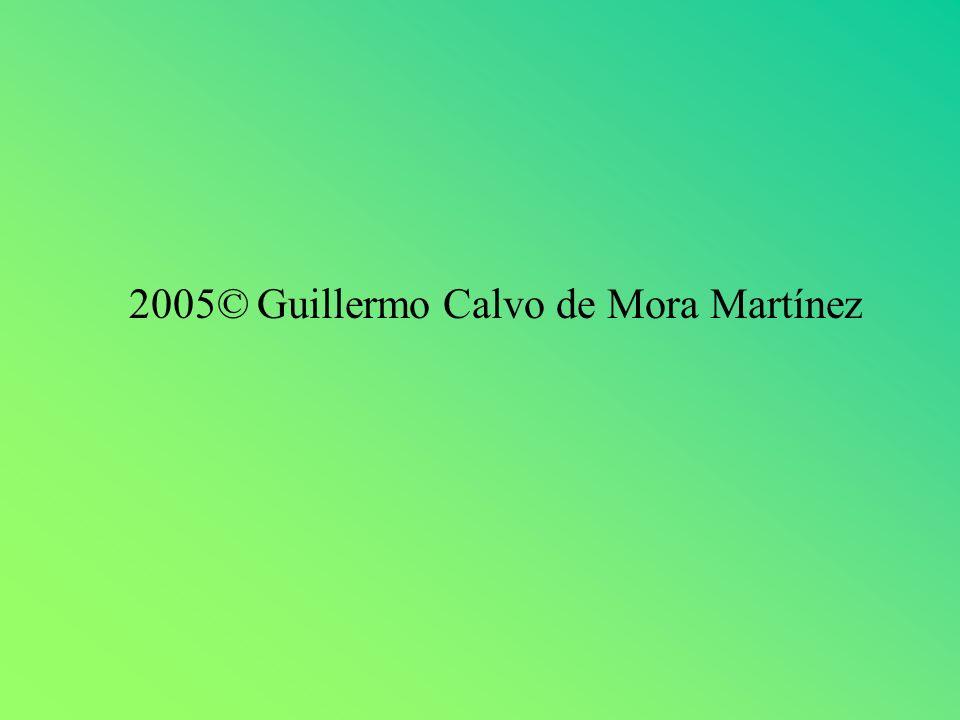 2005© Guillermo Calvo de Mora Martínez