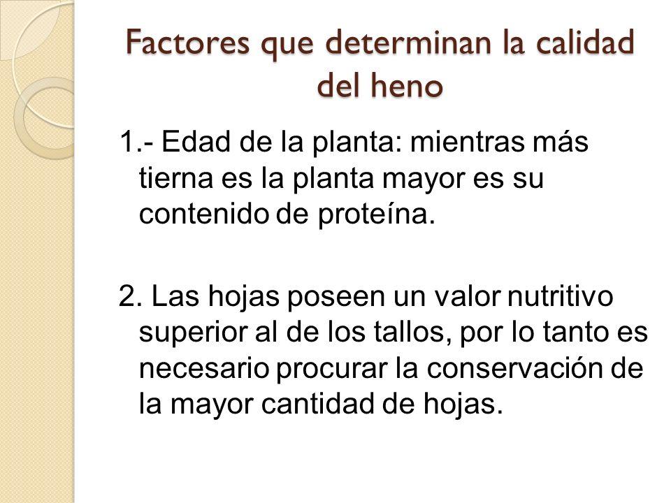Factores que determinan la calidad del heno