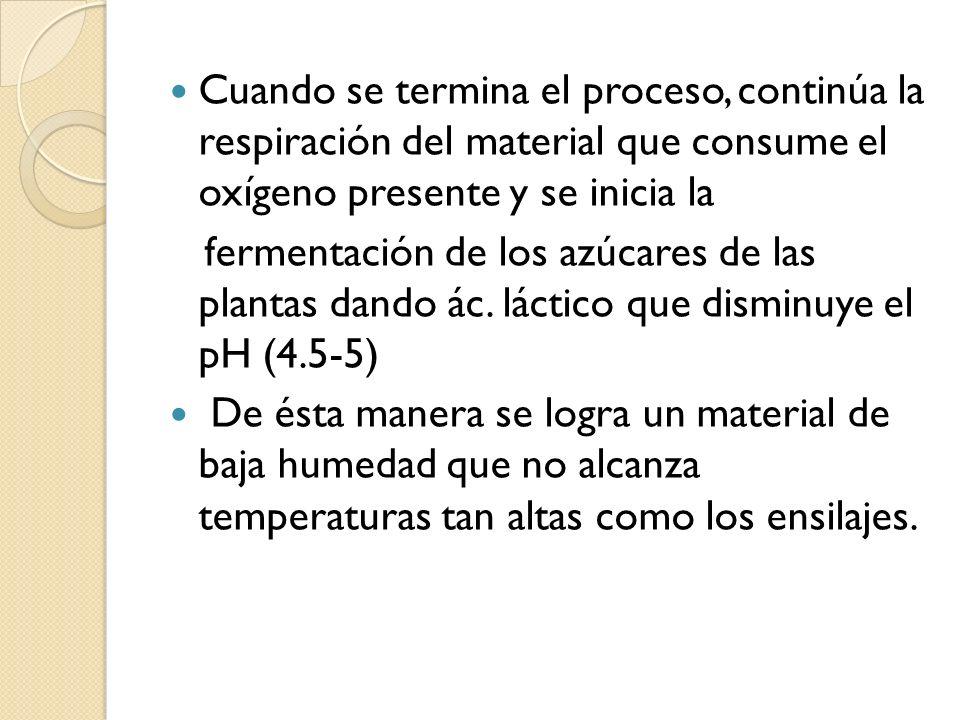 Cuando se termina el proceso, continúa la respiración del material que consume el oxígeno presente y se inicia la