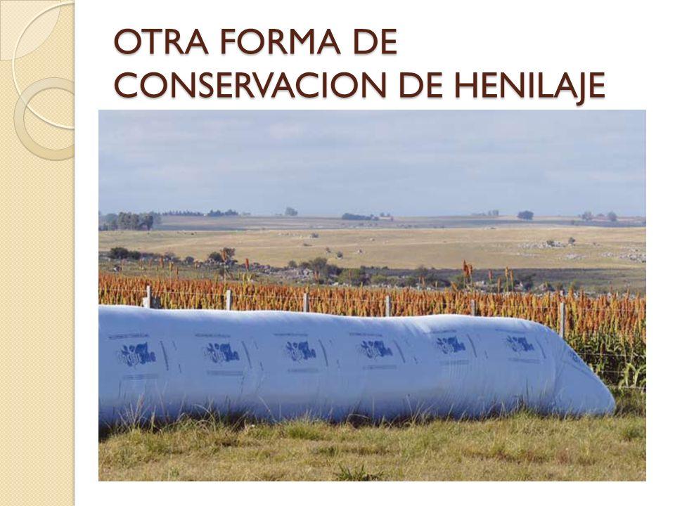 OTRA FORMA DE CONSERVACION DE HENILAJE