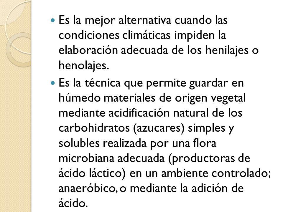 Es la mejor alternativa cuando las condiciones climáticas impiden la elaboración adecuada de los henilajes o henolajes.