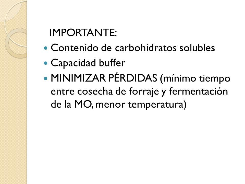 IMPORTANTE:Contenido de carbohidratos solubles. Capacidad buffer.