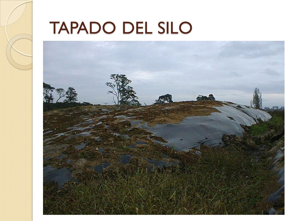 TAPADO DEL SILO