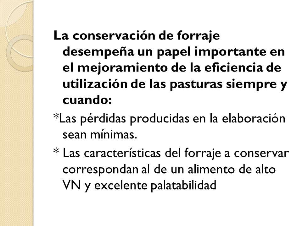 La conservación de forraje desempeña un papel importante en el mejoramiento de la eficiencia de utilización de las pasturas siempre y cuando: *Las pérdidas producidas en la elaboración sean mínimas.