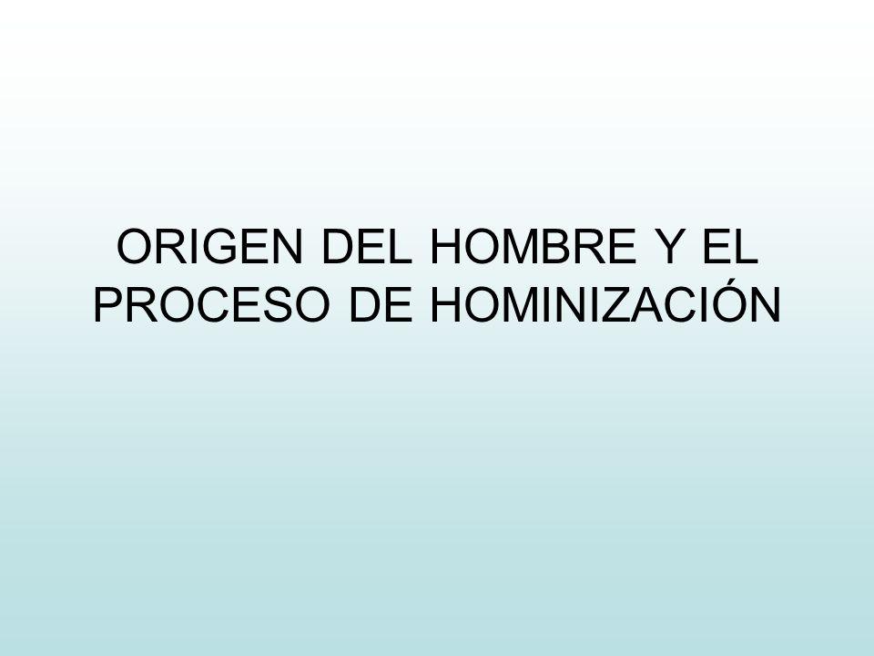 ORIGEN DEL HOMBRE Y EL PROCESO DE HOMINIZACIÓN
