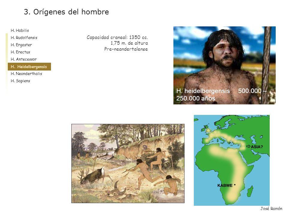 3. Orígenes del hombre H. heidelbergensis 500.000 – 250.000 años