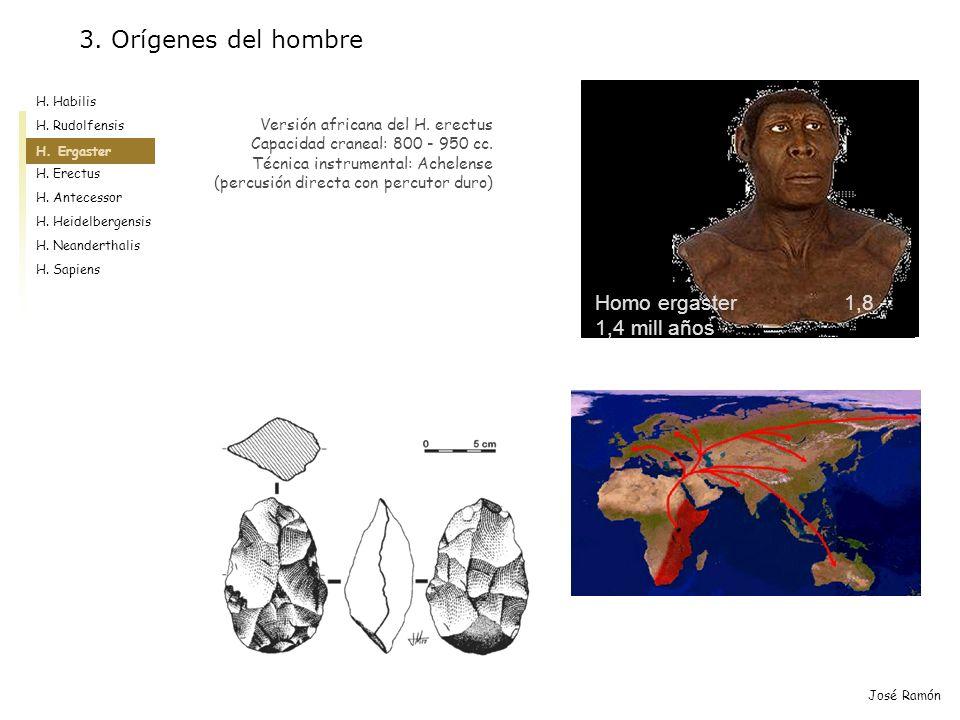 3. Orígenes del hombre Homo ergaster 1,8 -1,4 mill años