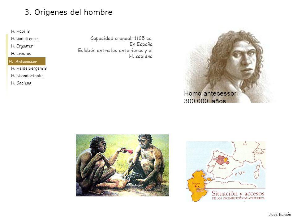 3. Orígenes del hombre Homo antecessor 300.000 años