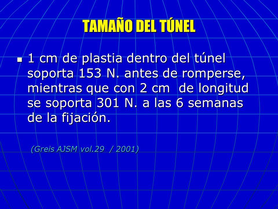 TAMAÑO DEL TÚNEL