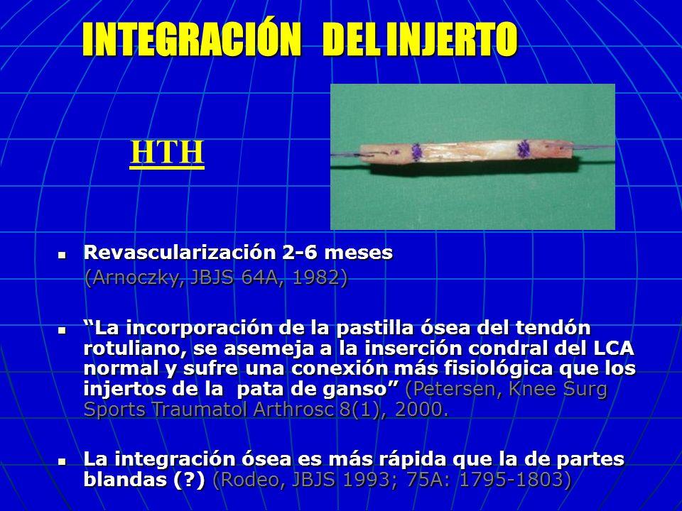 INTEGRACIÓN DEL INJERTO