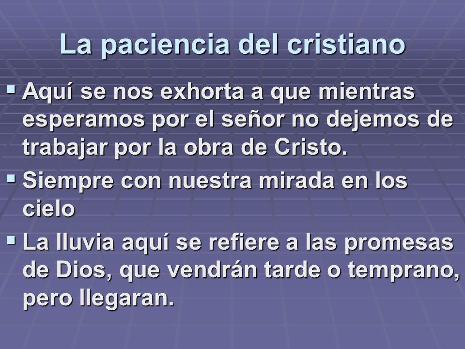 La paciencia del cristiano