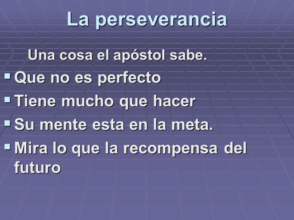 La perseverancia Que no es perfecto Tiene mucho que hacer