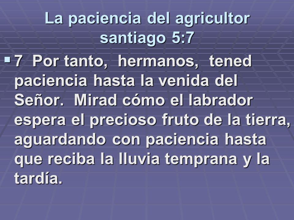 La paciencia del agricultor santiago 5:7