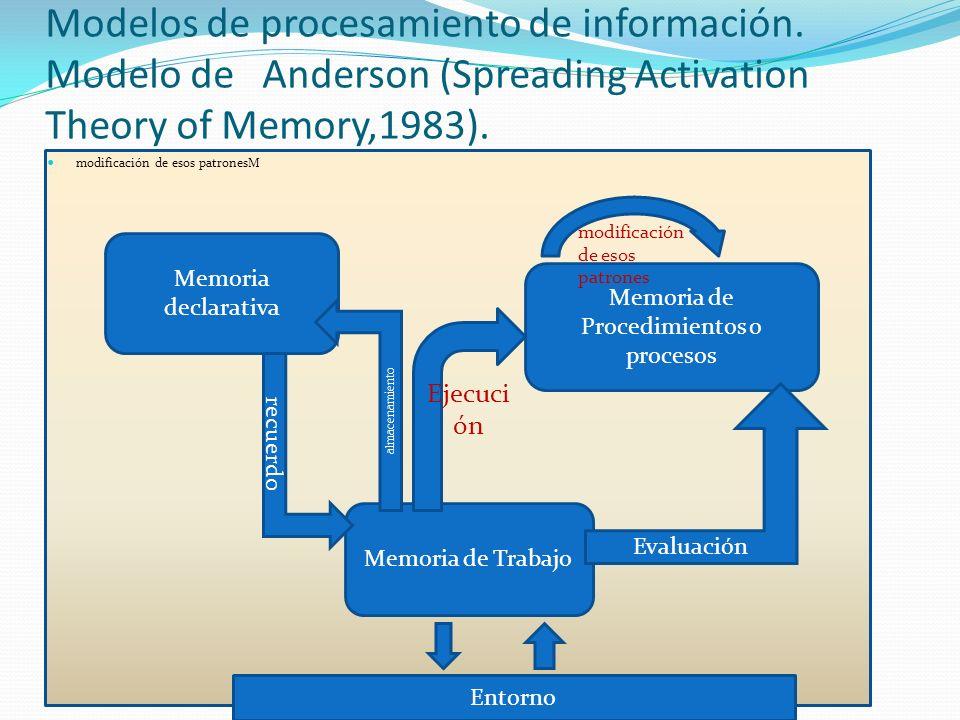 Memoria de Procedimientos o procesos