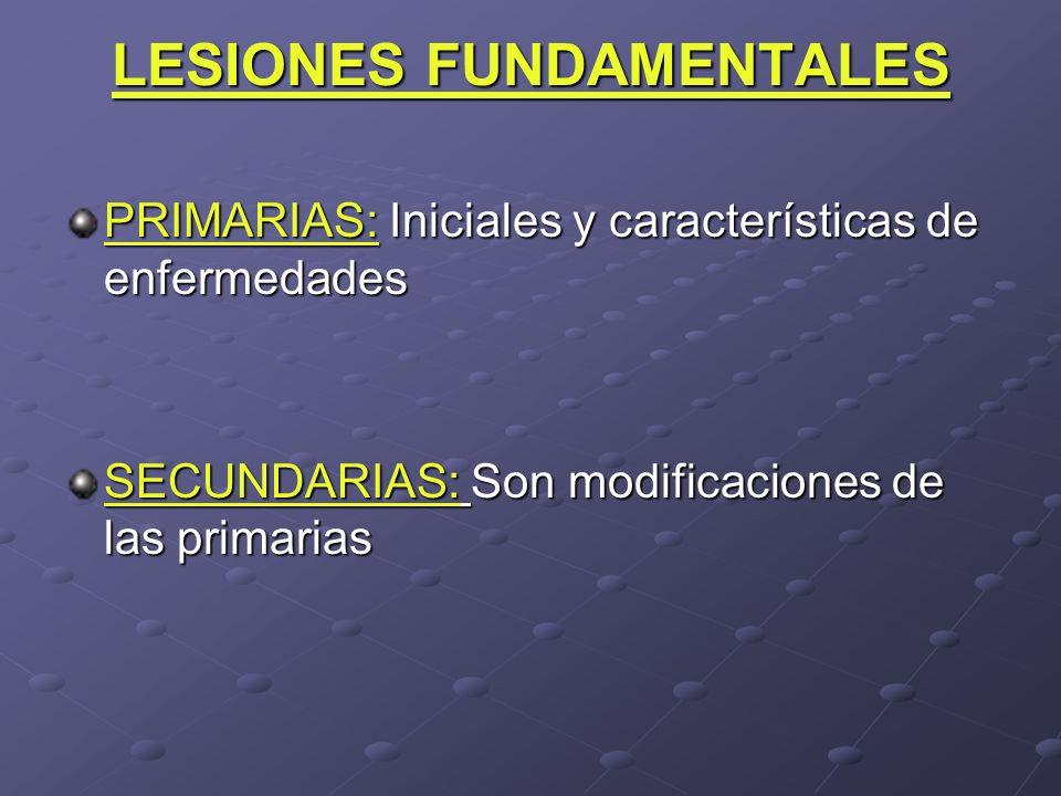 LESIONES FUNDAMENTALES