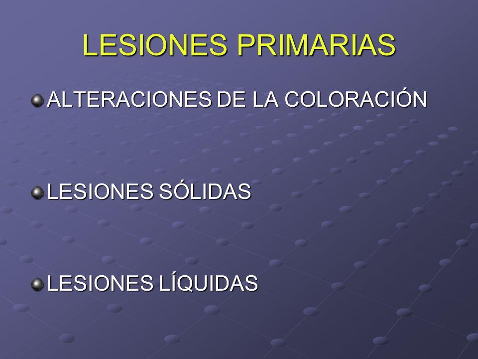 LESIONES PRIMARIAS ALTERACIONES DE LA COLORACIÓN LESIONES SÓLIDAS