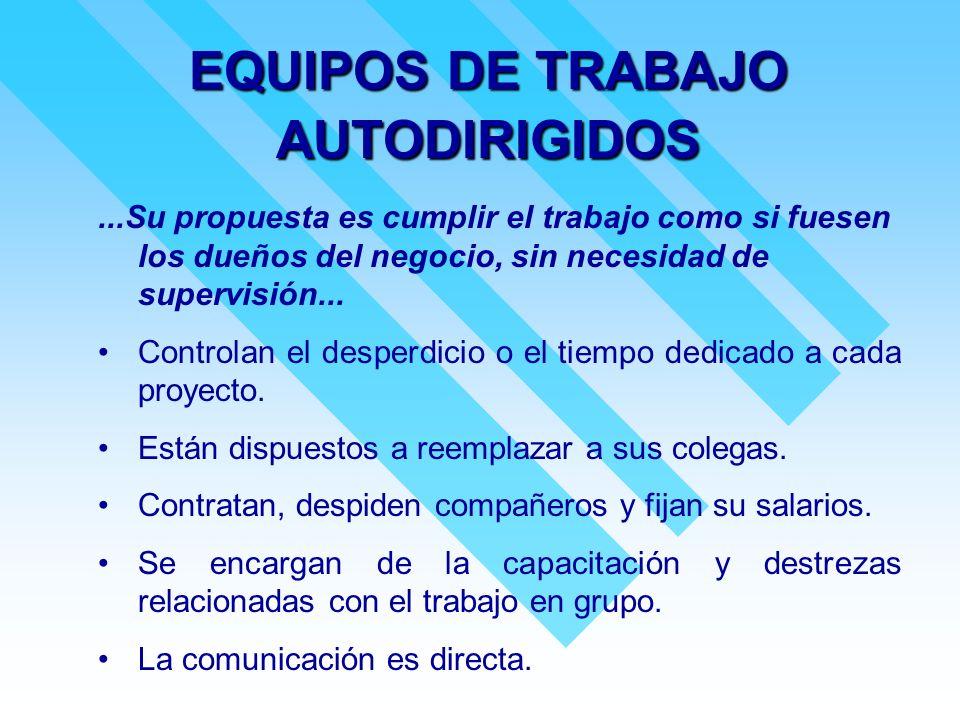 EQUIPOS DE TRABAJO AUTODIRIGIDOS