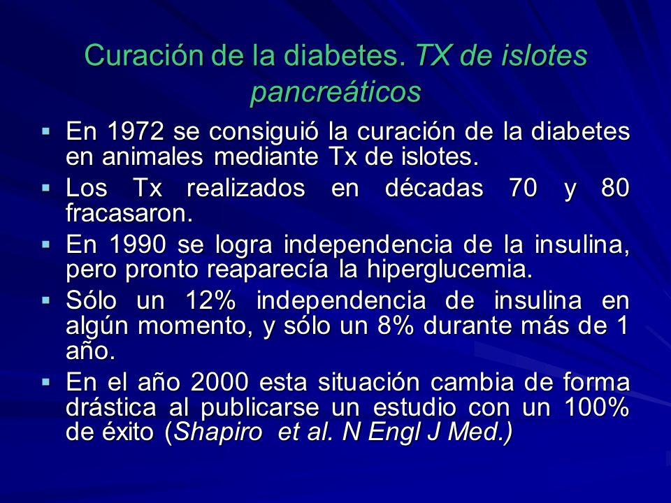Curación de la diabetes. TX de islotes pancreáticos