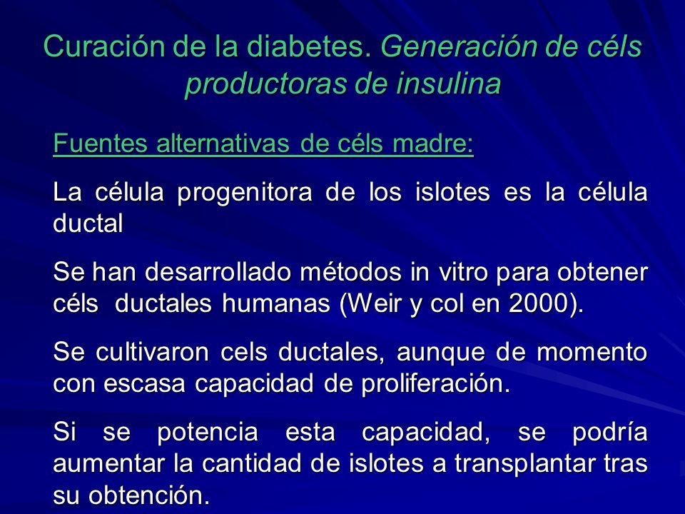 Curación de la diabetes. Generación de céls productoras de insulina