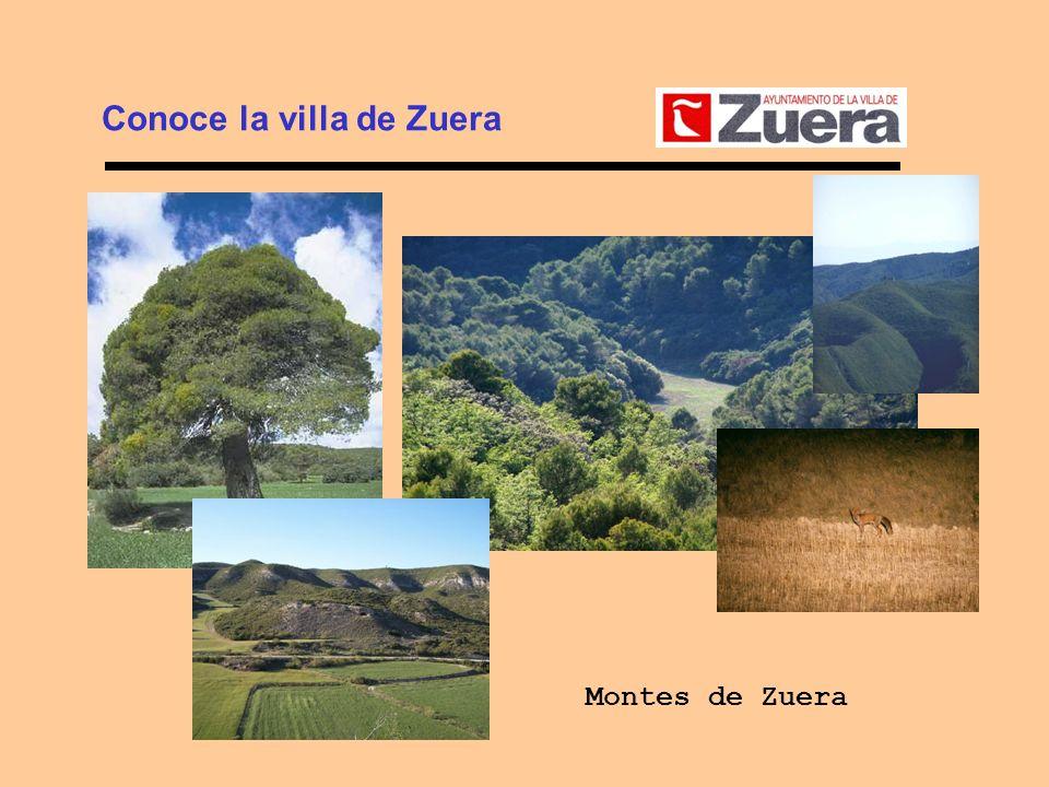 Conoce la villa de Zuera