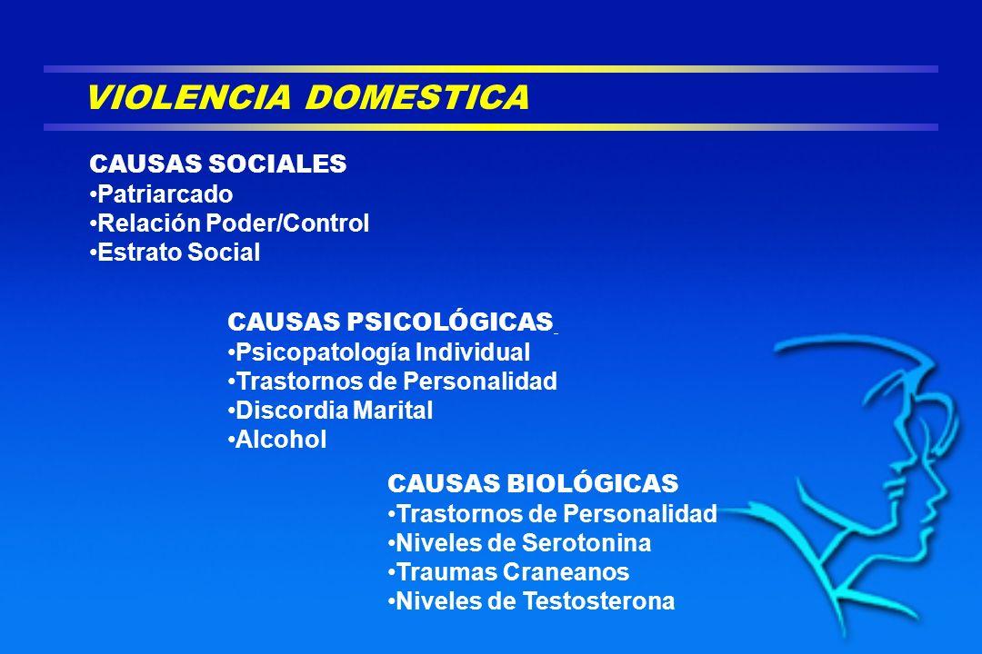 VIOLENCIA DOMESTICA CAUSAS SOCIALES Patriarcado Relación Poder/Control