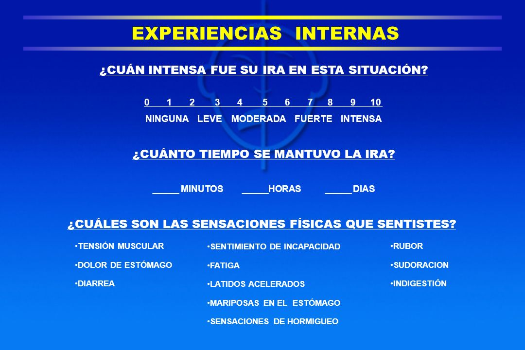 EXPERIENCIAS INTERNAS