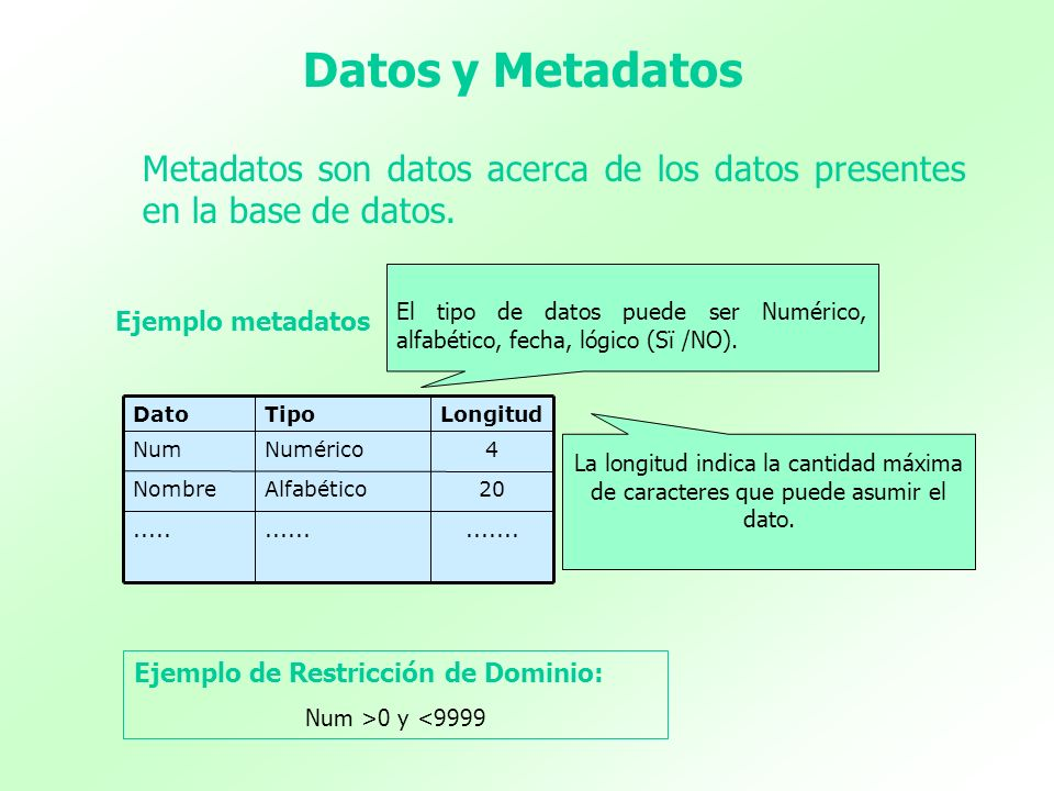 Datos y Metadatos Metadatos son datos acerca de los datos presentes en la base de datos.
