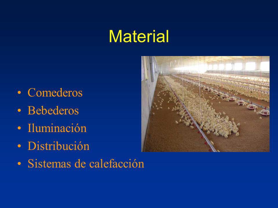 Material Comederos Bebederos Iluminación Distribución