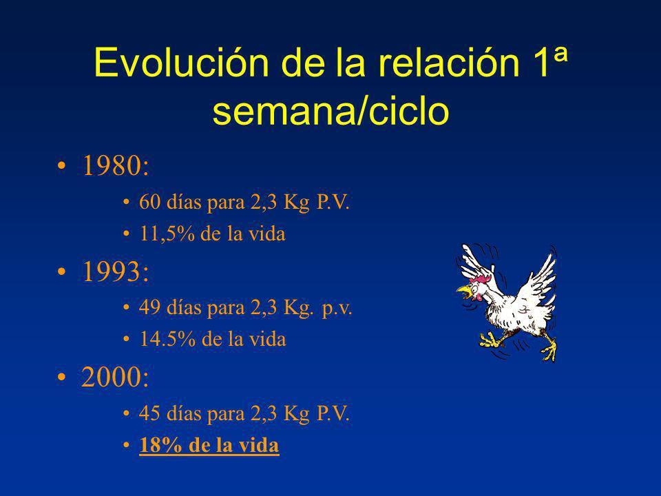 Evolución de la relación 1ª semana/ciclo