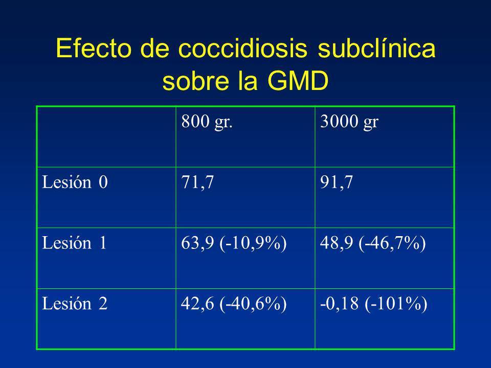 Efecto de coccidiosis subclínica sobre la GMD
