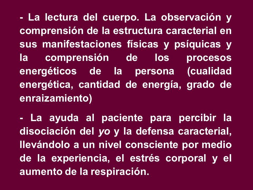 - La lectura del cuerpo. La observación y comprensión de la estructura caracterial en sus manifestaciones físicas y psíquicas y la comprensión de los procesos energéticos de la persona (cualidad energética, cantidad de energía, grado de enraizamiento)