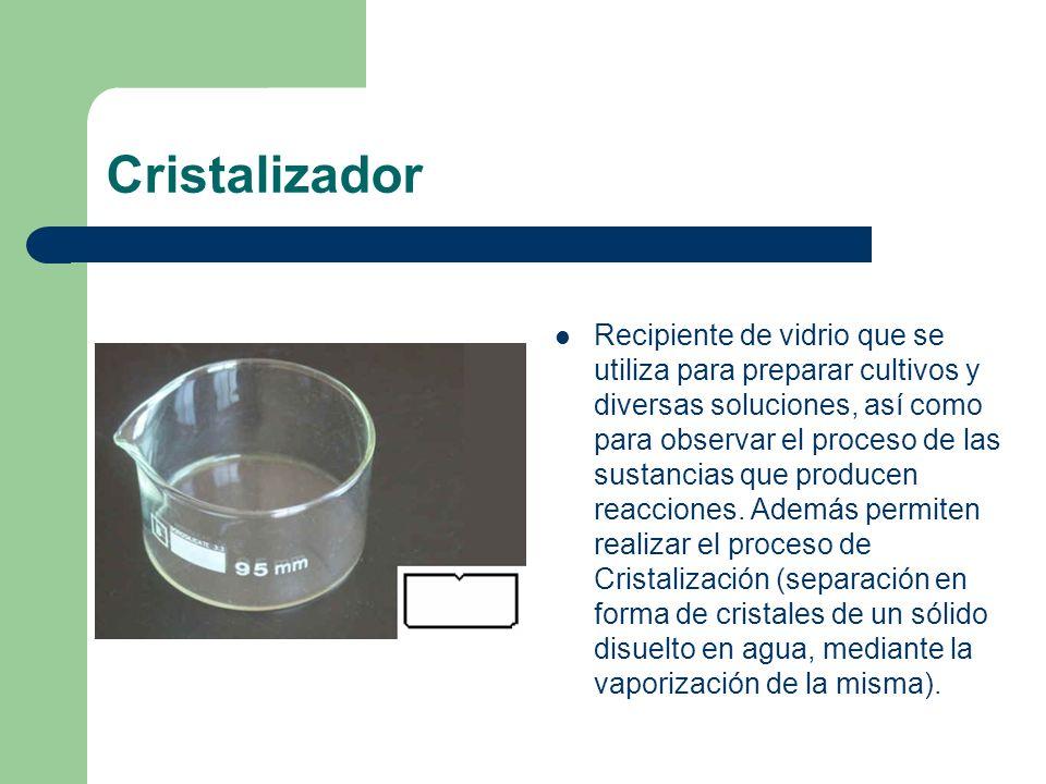 Cristalizador