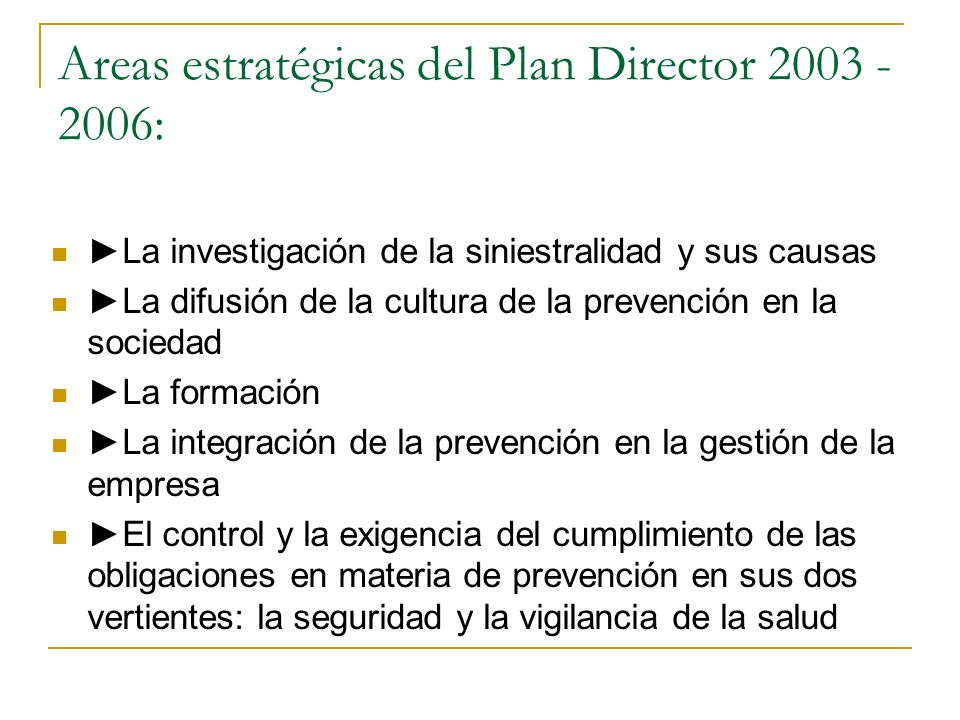 Areas estratégicas del Plan Director 2003 - 2006: